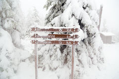 Travel Advisory covered with snow. Road sign covered with snow and frost on the background of the winter forest. Finnish Lapland Stock Photography