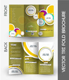 Travel Agent Tri-Fold  Brochure Stock Image
