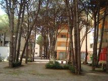 Travel Albania Durres region in Adriatic royalty free stock photography