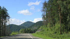 Travel along the roads of the Altai Krai. stock footage