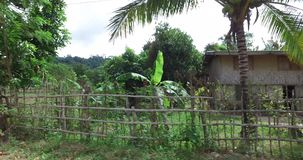 Travel along the roads near the village of tricycle. BUKANA, PHILIPPINES - FEB. 1:Travel along the roads near the village of tricycle FEB. 1, 2016 in Bucana stock video