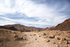 Travel in Arava desert Stock Images
