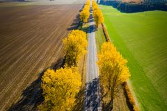 Travel background. Fall landscape. Aerial drone view. Empty road to horizon with autumn yellow trees. At the roadside stock photography