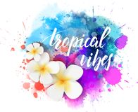 Travel background with flowers. Abstract travel background with plumeria flowers on colorful watercolor splash. Handwritten modern calligraphy lettering message stock illustration