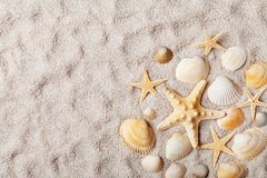 Travel background from sandy beach decorated with starfish and seashell. Top view. Stock Image