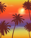Travel Backgrounds with Palm Trees. Exotic landscape. Vector. Illustration Royalty Free Stock Photo