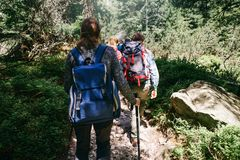 Travel backpacking lifestyle Group traveler backpack walking for. Travel and backpacking lifestyle concept. Group of traveler with backpack walking forest royalty free stock photos