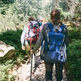 Travel backpacking lifestyle Group traveler backpack walking forest. Travel and backpacking lifestyle concept. Group of traveler with backpack walking forest royalty free stock photo