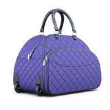 Travel bag with compartments isolated on white background. 3d re Royalty Free Stock Photos