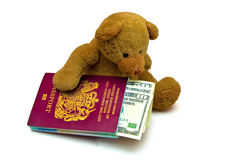 Travel Bear Stock Images
