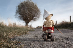 Travel Bear Stock Photography