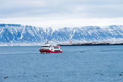 Travel Beautiful view of the Iceland winter season by ferry or c. Ruise ship. Snow-capped mountain in the background Stock Photography