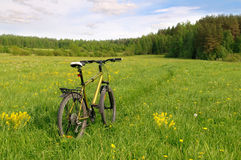 Travel by bicycle. Royalty Free Stock Photo