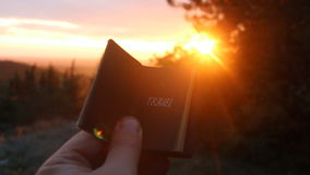 Travel - Book with the inscription. Sunset. Book with the inscription travel. Forest on background stock footage