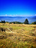 Travel on Bosnian mountaine Royalty Free Stock Image