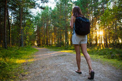 Travel concept - back view of woman with backpack hiking in fore Royalty Free Stock Images
