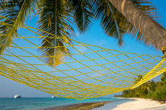 Travel concept with a hammock in a tropical beach.  Stock Photos