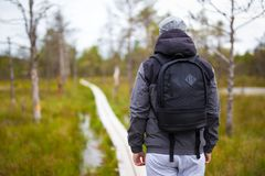 Rear view of man hiking in forest Royalty Free Stock Photography