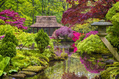 Travel Concepts. Amazing Picturesque Scenery of Japanese Garden Stock Photos