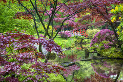 Travel Concepts. Amazing Picturesque Scenery of Japanese Garden Royalty Free Stock Photo