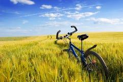 Travel conceptual image. Stock Photos