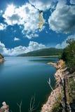 Travel destination and seagull. At lake Vidraru in Romania Royalty Free Stock Image