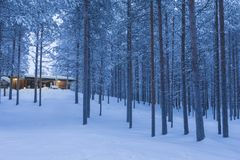 Travel Destinations Ideas. Illuminated Wooden House. Located in Tranquil Picturesque Nordic Forest in Scandinavia At Christmas Time.Horizontal Image Composition Royalty Free Stock Photos