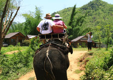 Travel on the elephant Royalty Free Stock Photo