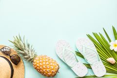 Travel flat lay items: fresh pineapple, sunglasses, beach slippers, tropical flower and palm leaf lying on blue background. Place stock images