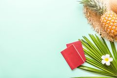 Travel flat lay items: fresh pineapple, tropical flower and palm leaf. Place for text. Top view. Summer concept stock images