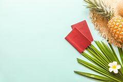 Travel flat lay items: fresh pineapple, two passports, hat, tropical flower plumeria and palm leaf. Place for text. Top view. stock images