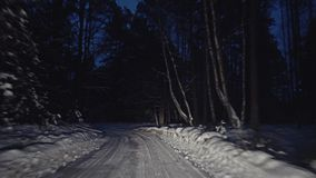 Travel through the forest winter night road. In car stock video