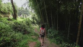 Travel girl with bag walks along path in tropical park of tropical plants, palms, bamboo plantation. High quality stock footage shot with Sony 6500. Traveler stock video footage