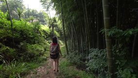 Travel girl with bag walks along path in tropical park of tropical plants, palms, bamboo plantation. High quality stock footage shot with Sony 6500. Traveler stock footage