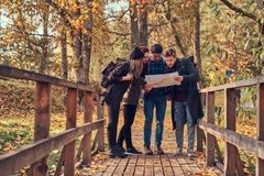 Group of young friends hiking in autumn colorful forest, looking at map and planning hike. Travel, hiking, adventure concept. Group of young friends hiking in stock photos