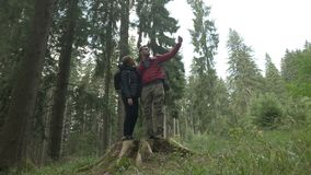 Travel hiking selfie taken by beautiful active couple standing on stump tree smiling at camera using modern smartphone mobile -. Travel hiking selfie taken by stock video