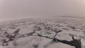 Travel  In the ice ,  Arctic. Travel on the ship in the Arctic stock video