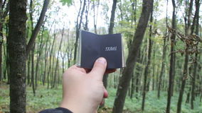 Travel idea, book with text . Forest in the background. Travel or Adventure idea. Hand holding a book with the inscription stock footage