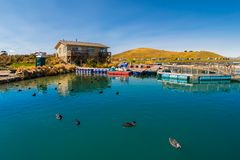 Travel image of salmon farm lake house in New Zealand royalty free stock photos