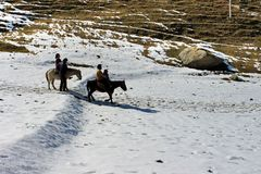 Horse ride in the nature mountain valley. Travel India. Horse ride in the nature mountain valley Royalty Free Stock Photos