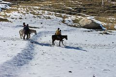 Horse ride in the nature mountain valley. Travel India. Horse ride in the nature mountain valley Stock Photos