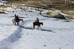 Horse ride in the nature mountain valley. Stock Photos