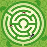 Travel of insects. Insects persistently creep to the centre of a labyrinth. vector. illustration Royalty Free Stock Images