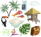 Travel on island Set with palm trees, bungalow, Tropical flowers, fish and birds vector illustration