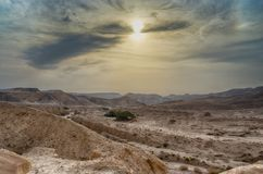 Travel in Israel negev desert landscape. Stone deserts hiking for health and mountain view Stock Image