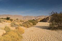 Travel in Israel negev desert landscape. Stone deserts hiking for health and mountain view Royalty Free Stock Images