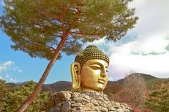 Travel in korea Stock Photos