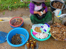Travel in Lao. VANG TAO, LAO P.D.R. - JULY 28 : Unidentified woman is selling local food and goods at Thai - Lao border business center on July 28, 2013 in Vang Royalty Free Stock Images