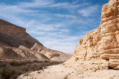 Travel in Negev desert, Israel Royalty Free Stock Photos