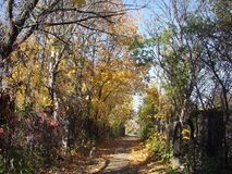 Travel through old gardens in autumn Royalty Free Stock Photography